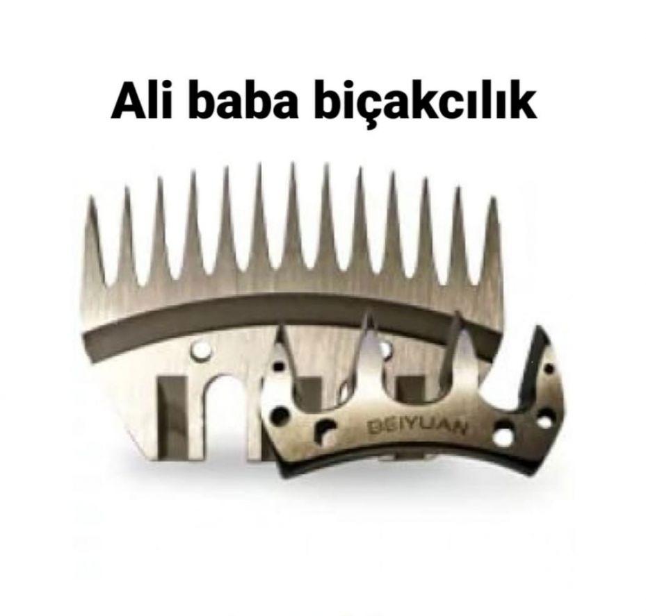 alibababicakcilik.com
